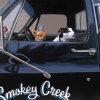 smokey creek salvage truck