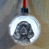 ness ornament