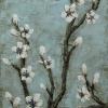 retro blossom