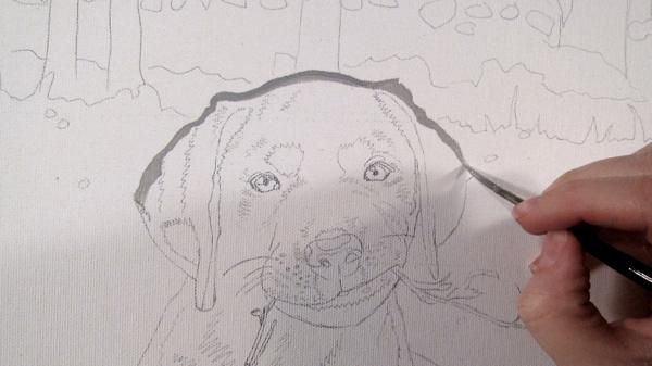 jamie sketch