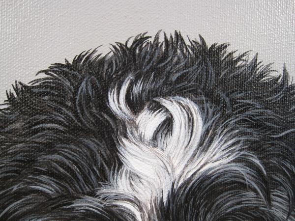 hair tuft