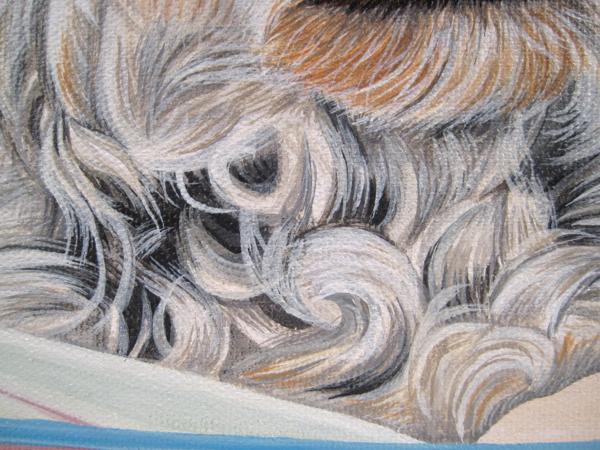 curl detail