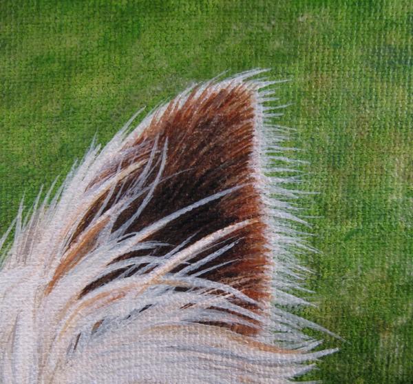 ear & grass detail