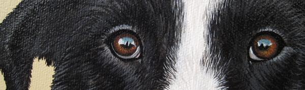 abby eyes