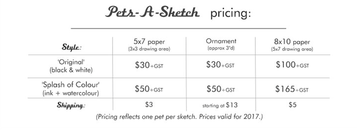sketch pricing 2017