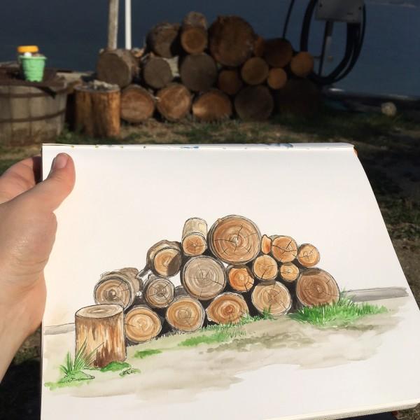 firewood sketch