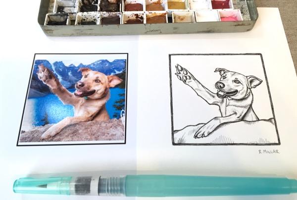skye sketch side by side