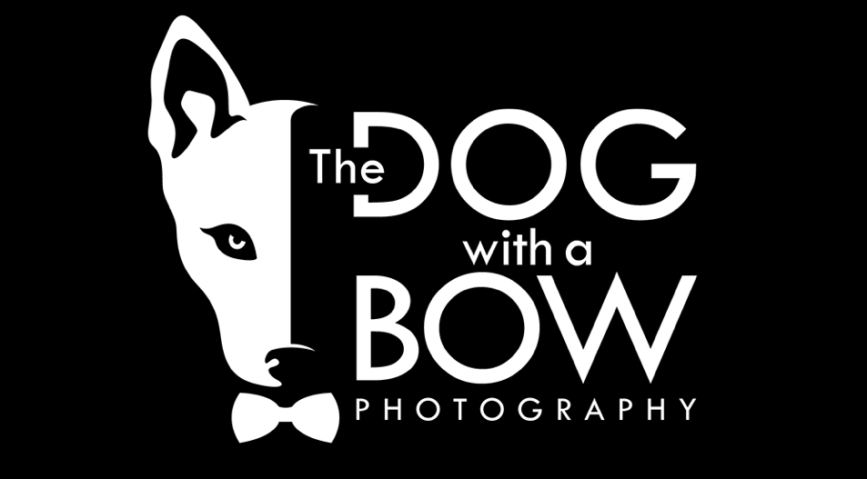 dog with a bow logo