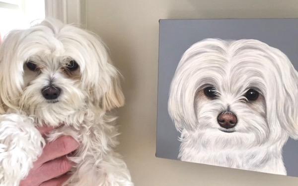 lily doppelgänger